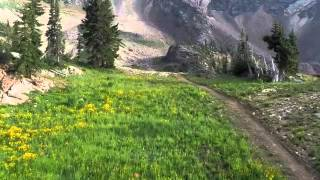 Snowbird Big Mountain MTB Trail