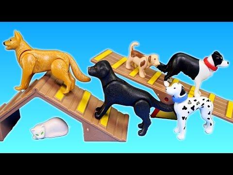 Playmobil City Life Dog Park Animal Building Set Build Review