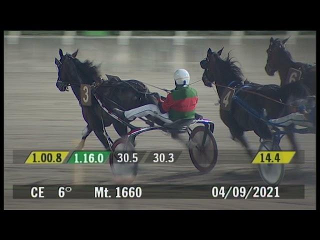 2021 09 04 | Corsa 6 | Metri 1660 | Premio Verduri'
