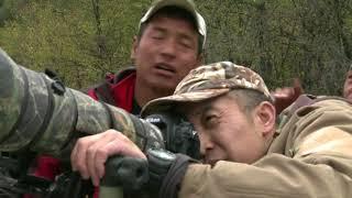 Фотографы природы - Китай