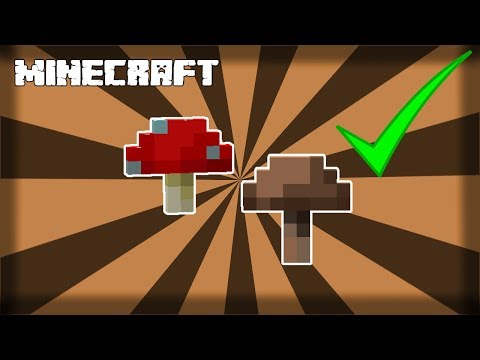 MINECRAFT | How To Grow Brown And Red Mushrooms! 1.15.1