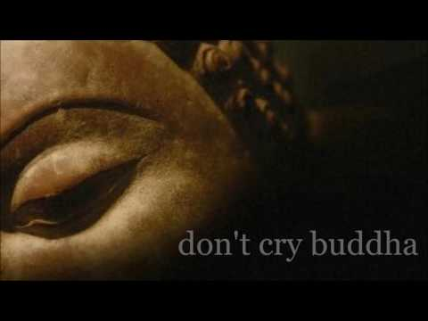 don't cry buddha