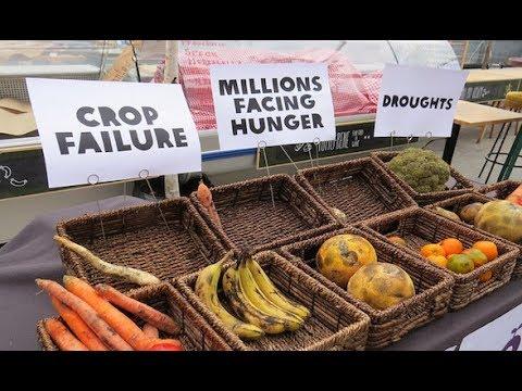 Food Shortages and Skyrocketing Inflation  Hqdefault