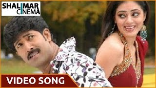 Allare Allari Movie || Nuvvaaina Nenainaa  Video Song || Allari Naresh,Venu,Parvati Melton