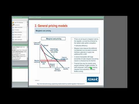 Training Module on Electricity Market Regulation - SESSION 8 - Pricing