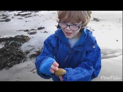 Collecting Stones in Sunny Scotland (One Take)