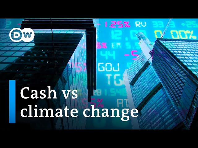 Can green investment change the world?   DW Documentary