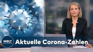 Die gesundheitsämter in deutschland haben dem robert koch-institut (rki) binnen eines tages 23 804 corona-neuinfektionen gemeldet. zudem wurden innerhalb von...