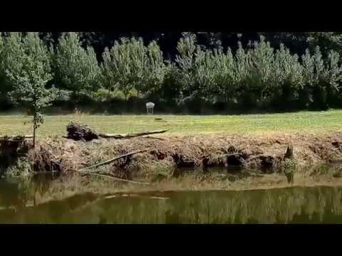 Leira para exploração agrícola, Santo Adrião, Vizela.