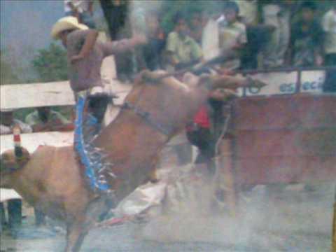 chichihualco guerrero montador la beyota