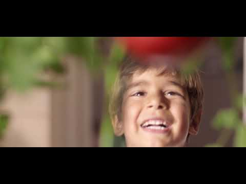 ZER TOMATO PASTE Video Klip