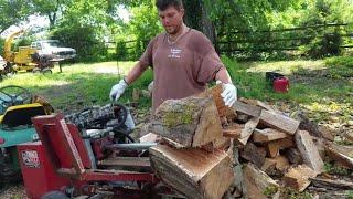 Timberwolf tw 5 splitting HUGE oak rounds