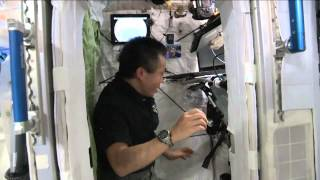 Space Station Bedroom Is