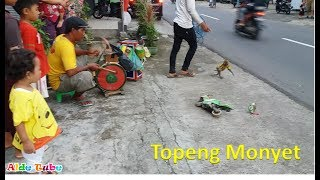 Nonton Topeng Monyet Lucu Pintar - Monkey street attraction