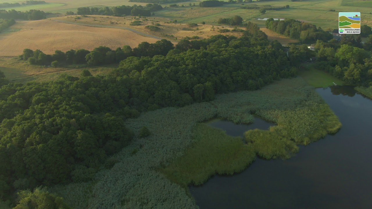 Dronefilm 4 - Langsø