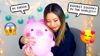 $400 SQUISHY UNBOXING !! BIGGEST SQUISHIES IN THE WORLD !!