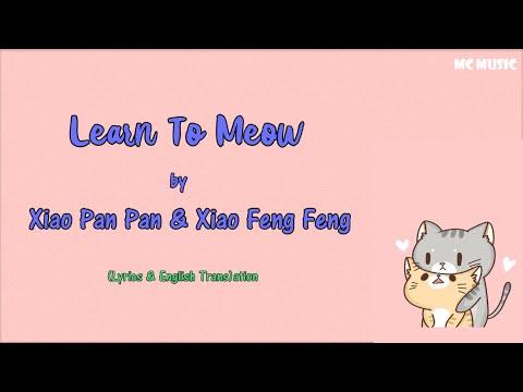 Learn To Meow by Xiao Pan Pan & Xiao Feng Feng [Lyrics/English Translation]