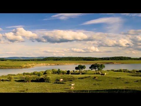 70 years on: Green development flourishes in Inner Mongolia