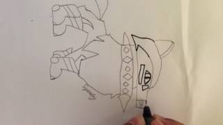Me drawing a picture of me in animal jam play wild.