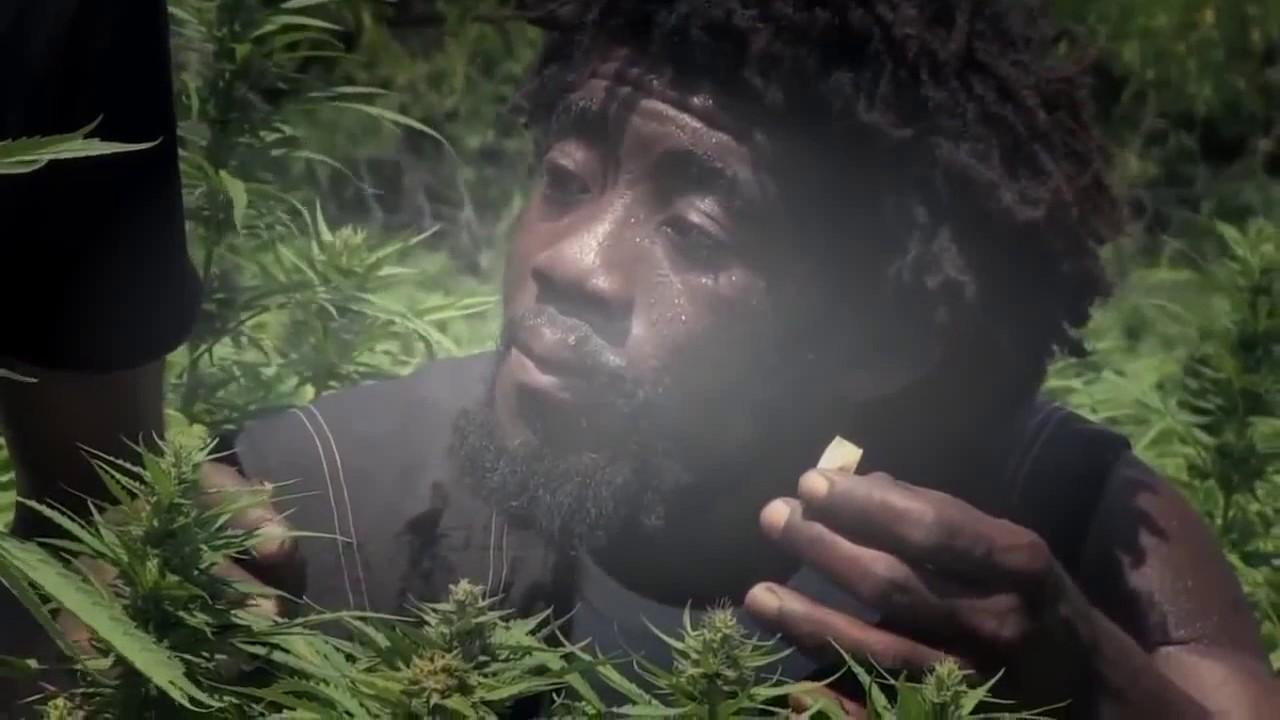 Фильм конопля документальный выпариватель марихуаны