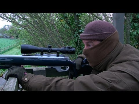 The Shooting Show - high seat foxing and the Pulsar Forward DFA75