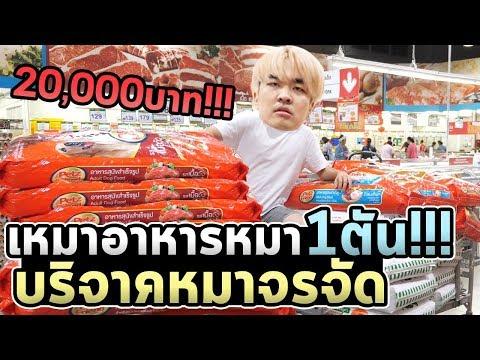 ซื้ออาหารหมา20000บาท!!! แจกหมาเป็นพัน!!!