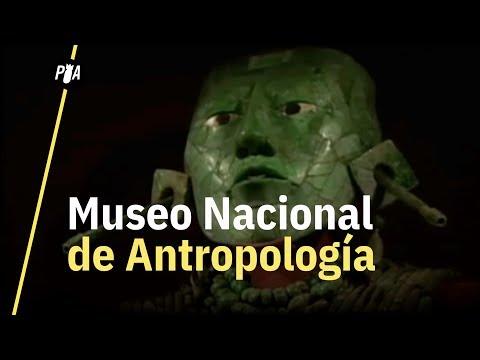 55 años del Museo Nacional de Antropología