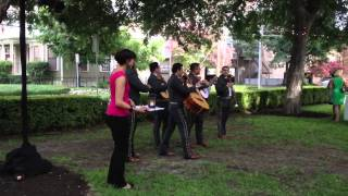 Mariachi band at a wedding ...