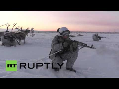 Russia: Northern Fleet troops train with huskies and reindeers for first time