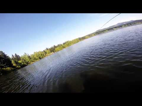 Lake Padden/Lake Samish Trout Fishing, Bellingham Wa