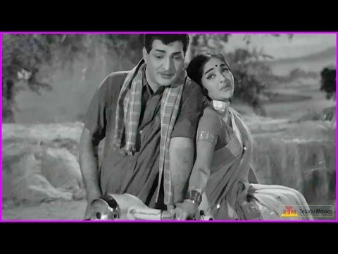 NTR Super Hit Old Duet Song - Chitti Chellelu Telugu Movie Video Song