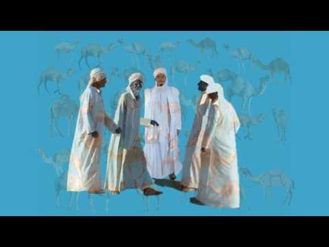 El hombre que calculaba: Herencia de 35 camellos para 3 hermanos