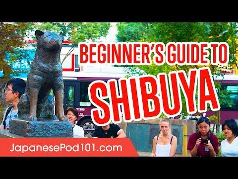 Japan Travel Guide: Shibuya