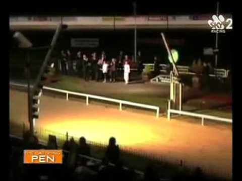 The Catching Pen with Sarina O'Day