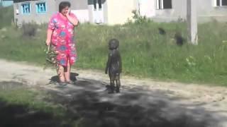 Контакт с пришельцами НЛО в деревне Уникальные редкие кадры Прикол с детьми