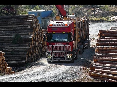 Scania R500 Timber Truck \8/ Sound