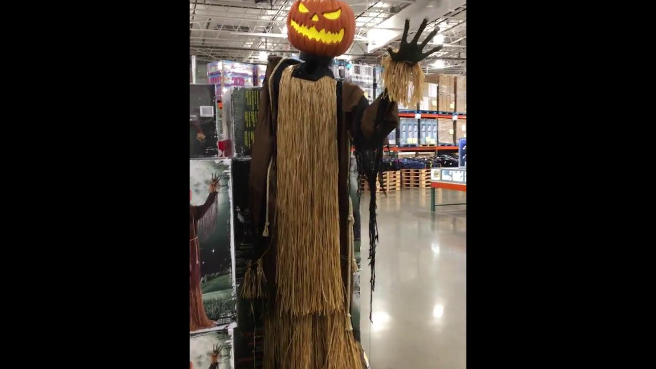 Costco Halloween Harvester Pumpkin 2017 Animated Youtube