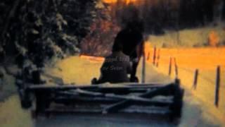 Bondelivet i Gåsevål 1982-1983,filmberättelse av Wilfried Hofmann