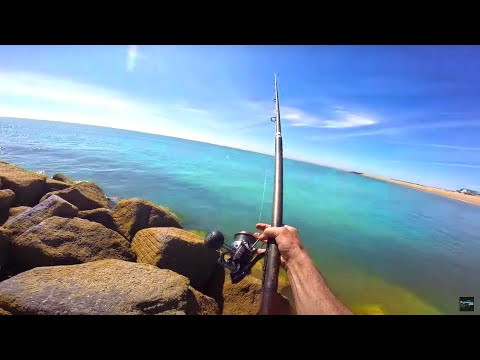 Beach Fishing With Worms & Crab
