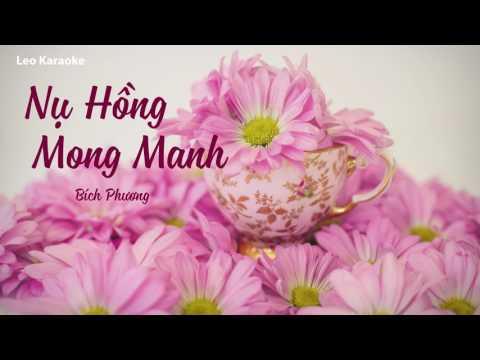 [Karaoke] Nụ Hồng Mong Manh - Bích Phương [Beat Chuẩn]