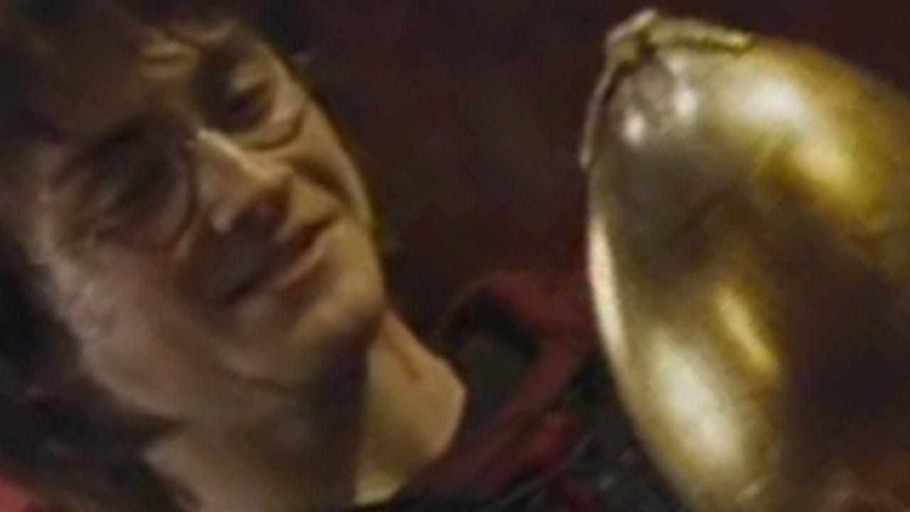 Poop Harry Potter Opens The Golden Egg Youtube