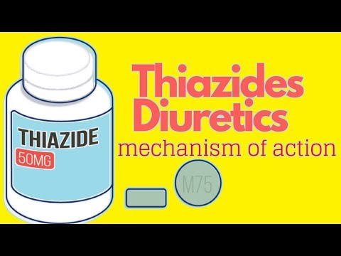 Thiazides Mechanism Of Action *ANIMATED*