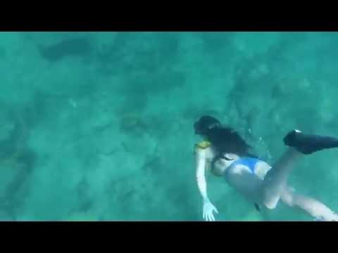 GoPro | Snorkeling in Fort Lauderdale, Florida
