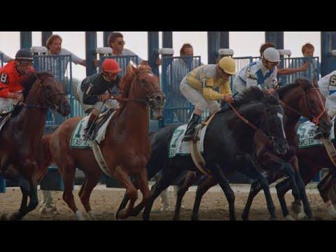 NBC's 'Dark Horses' doc revisits Easy Goer vs. Sunday Silence