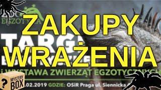 ZooEgzotyka 10.02 - ZAKUPY I WRAŻENIA! 13 NOWYCH PTASZNIKÓW W KOLEKCJI