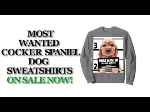 Most Wanted Cocker Spaniel Cute Dog Sweatshirts - Men's, Women's, Kid's - Black, Grey, Dark Heather