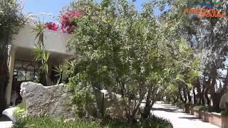 Отель Tunisia Lodge 4* - видео экскурс