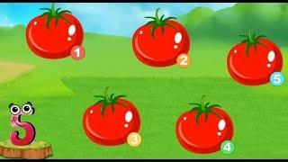 Bé tập đếm số hay nhất, bé tập đếm trái cây || Bé tập đếm từ 1 đến 20