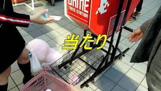 ゲームセンターで1000円の景品大当たり!艦隊コレクション 天龍&龍田 フタつきマグカップ