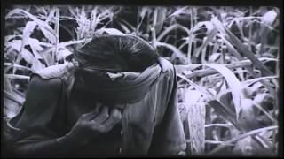 """[Japsub] Lão Hạc - Trích đoạn trong phim """"Làng Vũ Đại ngày ấy"""""""